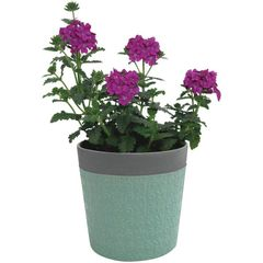 Cachepot-de-Ceramica-Verde-com-Borda-Little-Flowers-Urban