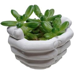 Cachepot-de-Ceramica-Branco-Hands-Closed-40399-Urban