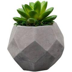 Vaso-de-Cimento-com-Cacto-II-de-Plastico-3606-Lyor