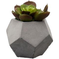 Vaso-de-Cimento-com-Cacto-III-de-Plastico-3607-Lyor
