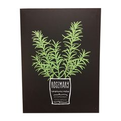 Quadro-Decorativo-Preto-Rosemary-Herbs-Urban