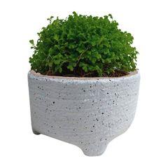 Vaso-de-Ceramica-Branco-Sandy-Medio-Urban