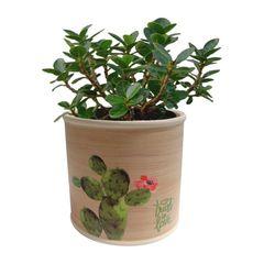 Cachepot-de-Ceramica-Bege-Cactus-Medio-Urban