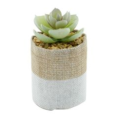 Vaso-de-Juta-Branco-com-Planta-Betty-Urban-079934.jpg