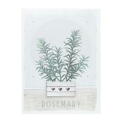 Quadro-Decorativo-Colorido-Vaso-Rosemary-30x40cm-Urban-080068.jpg