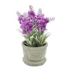 Vaso-de-Cimento-com-Flor-Violeta-Urban-080080.jpg