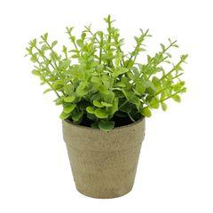Vaso-com-Planta-Artificial-Sedum-Sucullent-Urban-080243.jpg