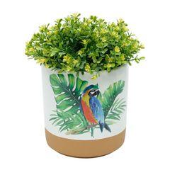 Vaso-de-Ceramica-Branco-Parrot-Grande-Urban-080103-460.jpg